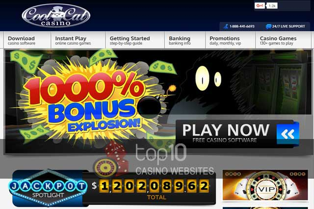 www cool cat casino instant play