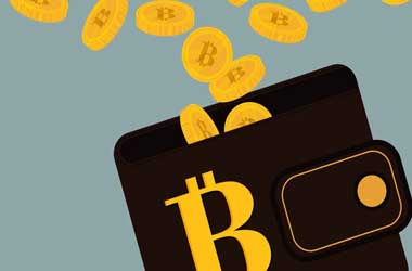 Bitcoin casinos online casinos accepts bitcoins while your main reason for researching bitcoins here may be to determine how you can use them to play online casino games youll also want to have a better ccuart Choice Image