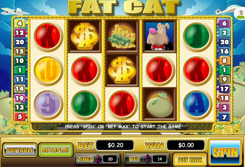 Fat Cat Video Slot