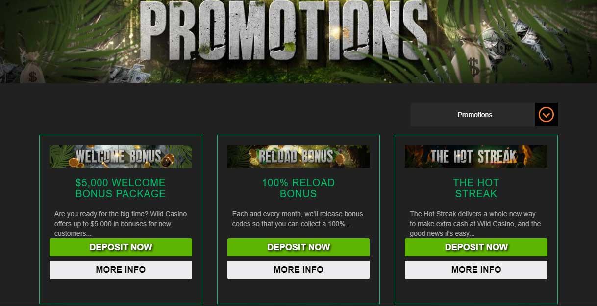 Wild Casino Promotions