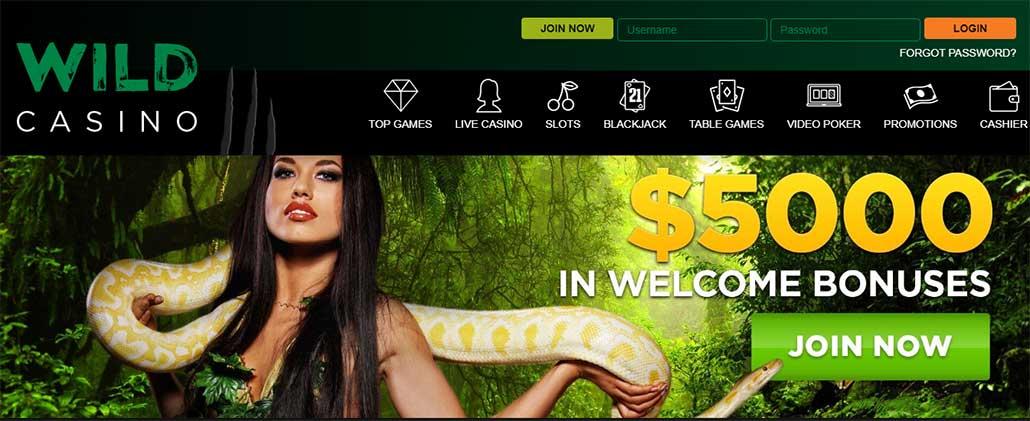 Wild Casino Home page